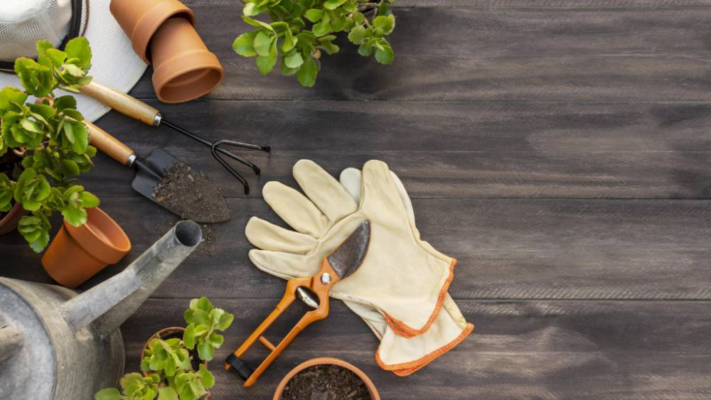 10 Top Tips For Upgrading Your Garden This Summer